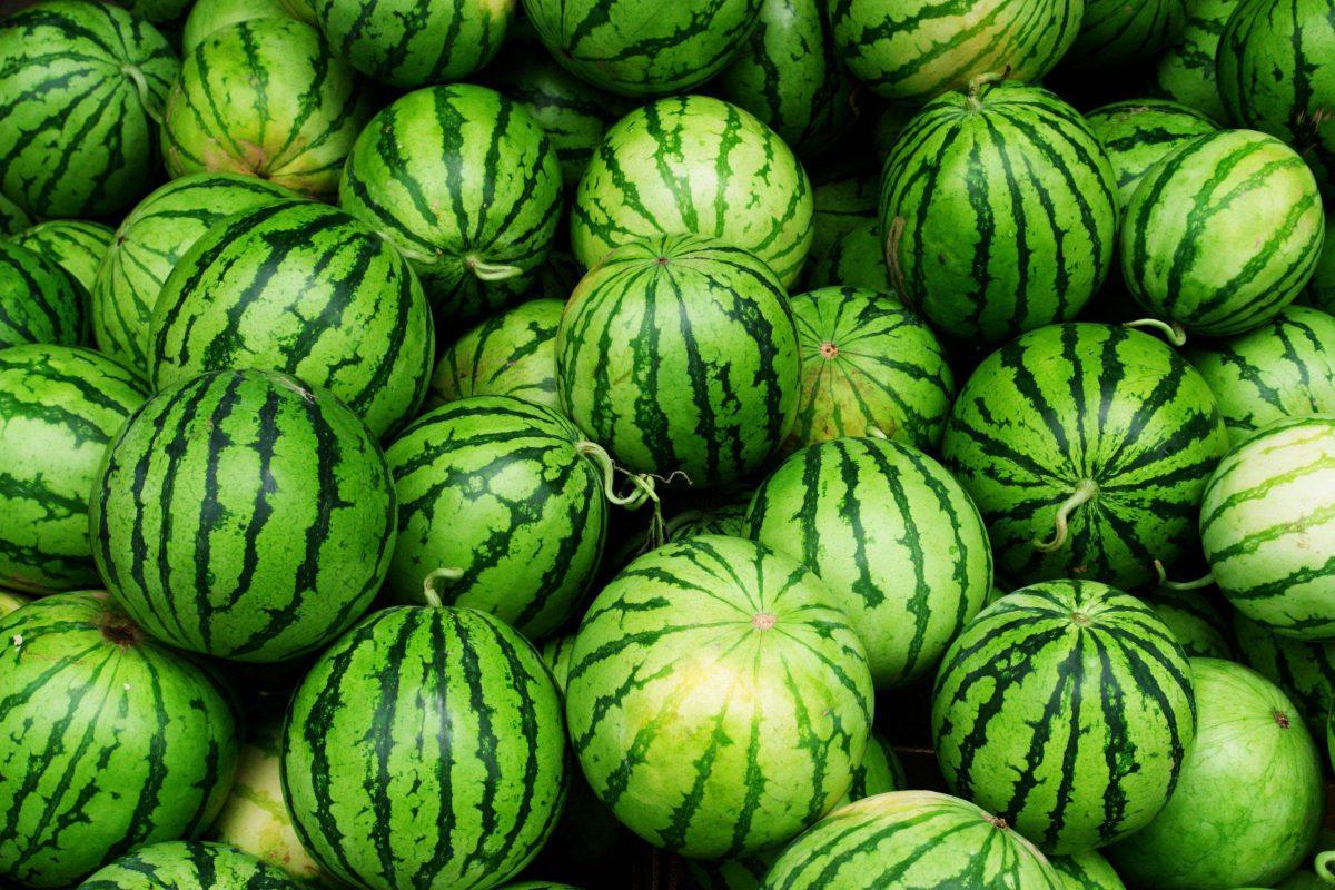 paraziți în pepene verde)