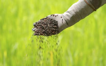 imprastierea insecticidului