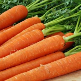 Legume morcov - Comunitatea Botanistii