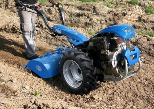 motocultor-castraveti