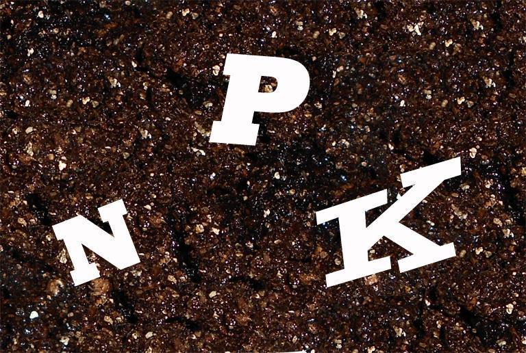 compozitia chimica a solului