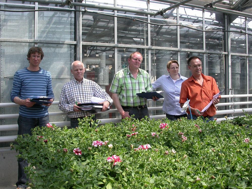 ingrasaminte-ecologice-mack-bio-agrar