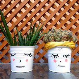repaus-plante-interior