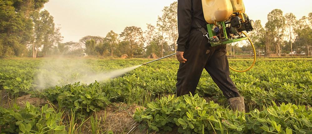 aplicarea-corecta-a-tratamentelor-fitosanitare