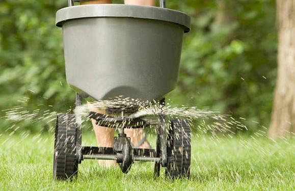 fertilizarea-gazonului