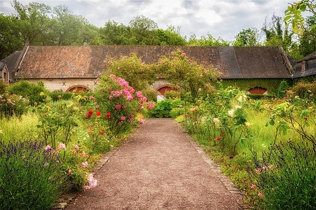 plan-fertilizare-trandafiri-si-flori-de-gradina