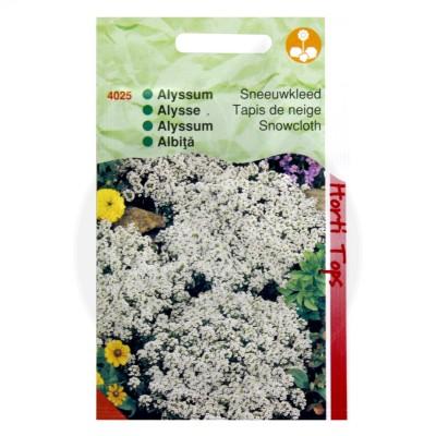 Ciucusoara, Alyssum Snowcloth, 0.5 g