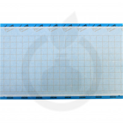 russell ipm adhesive trap impact blue 40 x 25 cm - 1