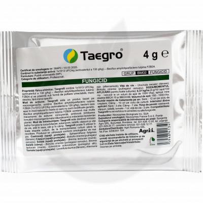 syngenta fungicide taegro 4 g - 1