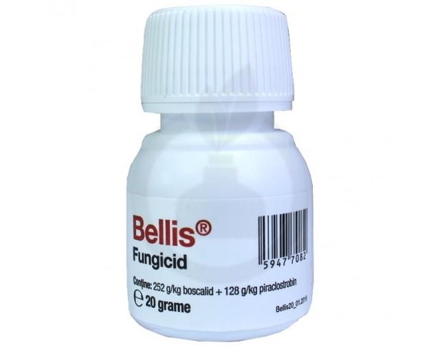 Bellis, 20 g