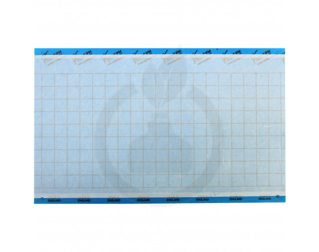 Impact Blue, 40 x 25cm