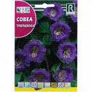 Cobea Trepadora, 1 g