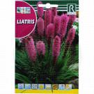 Liatris, 1 g
