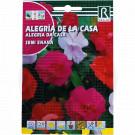 rocalba seed impatiens semi enana 0 2 g - 1