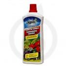 Ingrasamant lichid pentru plante de camera, 1 litru