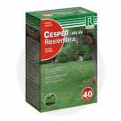 rocalba lawn seeds for regeneration 1 kg - 1