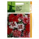 Garofite, Dianthus Chinensis Double Mix, 0.5 g