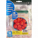 rocalba seed habanero orange 100 g - 1