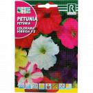 rocalba seed colorama hibrida f2 0 5 g - 1