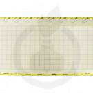 Impact Yellow, 40 x 25 cm