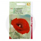 Mac De camp, Papaver Glaucum, 0.5 g
