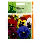 Panselute Amestec Culori, Viola Swiss Giant Mix, 0.25 g