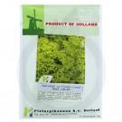 Patrunjel De Frunze Cret Moss Curled, 50 g