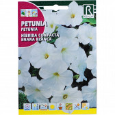 rocalba seed hibrida compacta enana blanca 0 5 g - 1