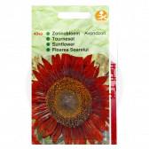 Floarea Soarelui Rosu, Helianthus Evening Sun, 4 g