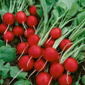 Ridichi De Luna Cherry Belle, 500 g