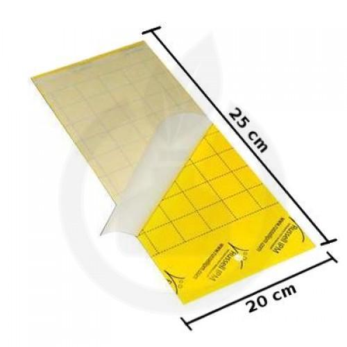 Impact - yellow adeziv insecte