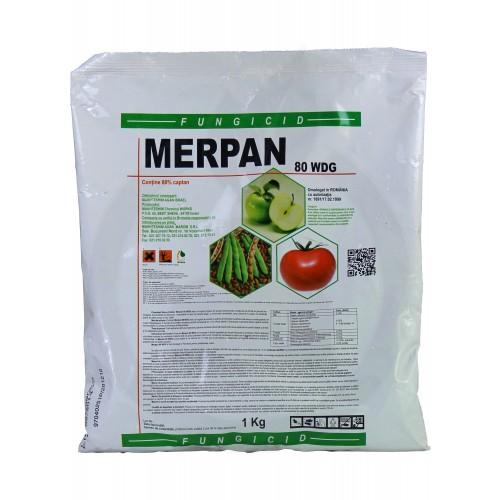adama fungicid merpan 80 wdg 5 kg - 1