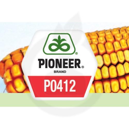 Seminte porumb Pioneer Aquamax P0412, sac 80 mii boabe