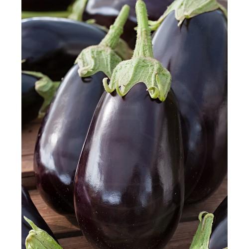 Vinete Halflange Violette, 50 g