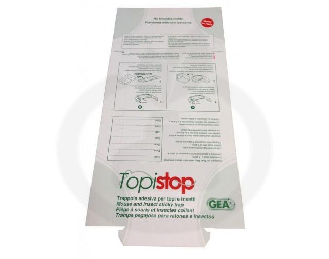 topi_top - 4