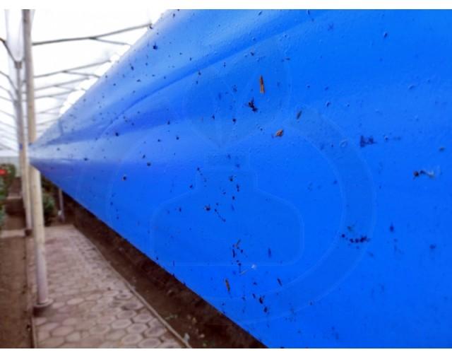 agrisense fly greenhouse sut blue glue roll 25 m 4 bucati - 3