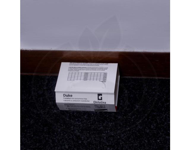ghilotina-t25-5-duke-adeziv-soareci
