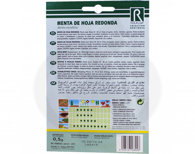 rocalba seed curly mint 10 g - 2