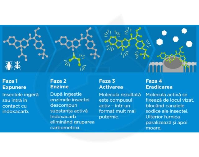 syngenta insecticid advion furnici gel 30 g - 3