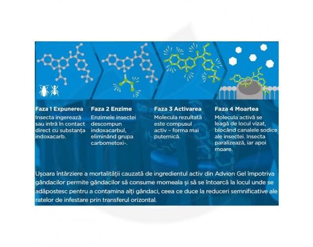 syngenta insecticid advion gandaci gel 30 g - 3