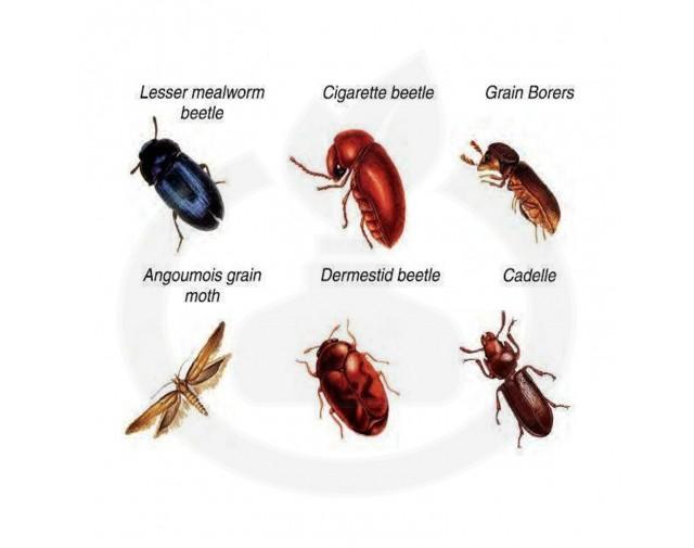 bayer insecticid agro k obiol ec 25 1 litru - 2
