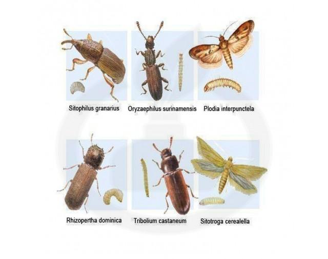 bayer insecticid agro k obiol ec 25 1 litru - 3