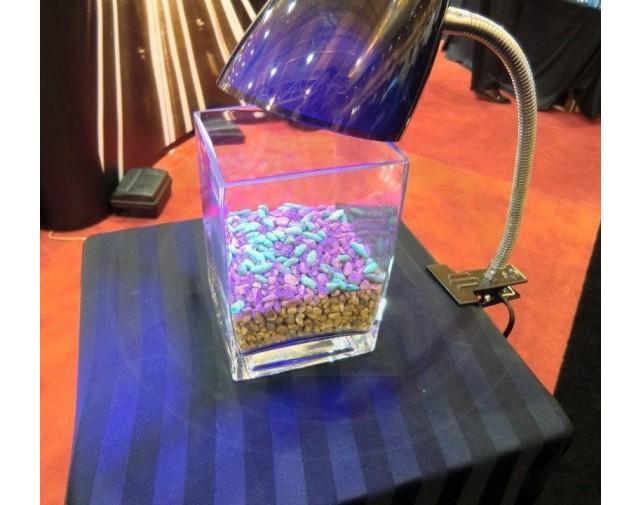 bell labs capcana detex blocks atractant rozatoare galeata 4 kg - 2