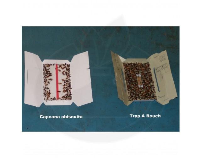 hoy hoy capcana trap a roach adeziv gandaci set 5 capcane - 6