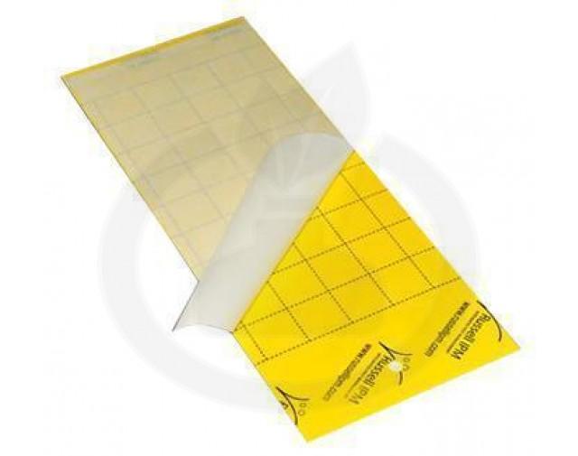 russell ipm capcana impact yellow adeziv insecte - 3