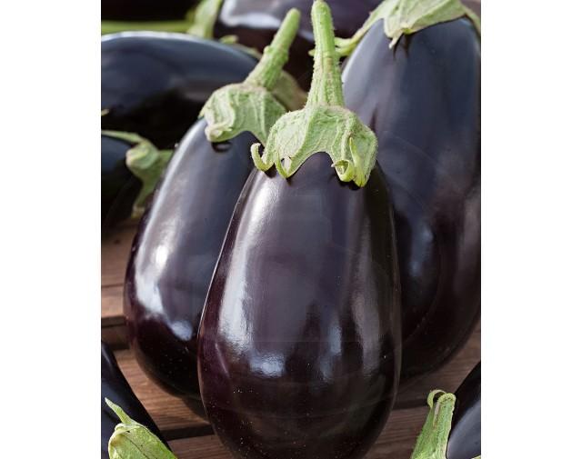 pieterpikzonen-seminte-vinete-halflange-violette-1-g