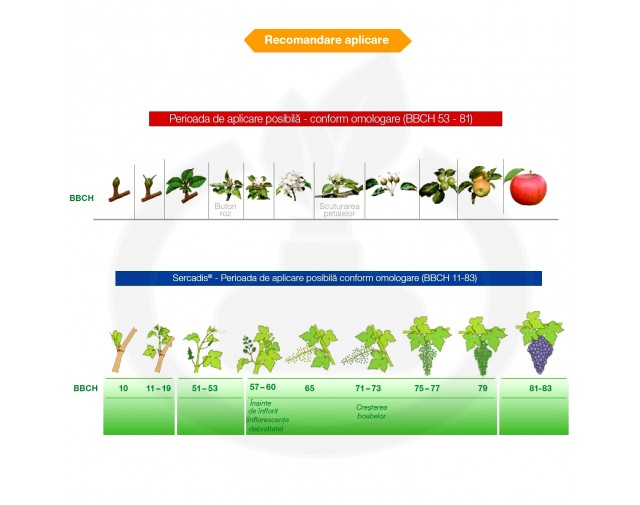 basf fungicid sercadis 1 litru - 2