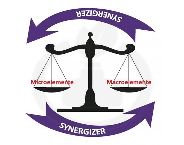 jh biotech ingrasamant synergyzer 8 32 4 200 ml - 1